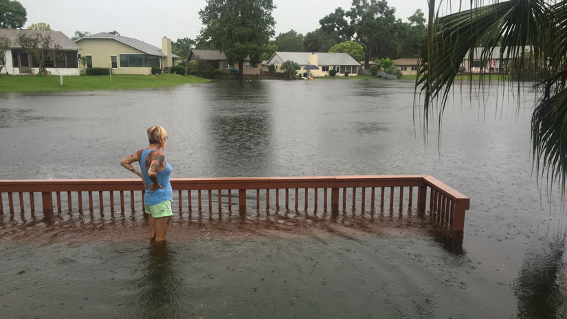 new flood zone maps now available on the palm beach county website